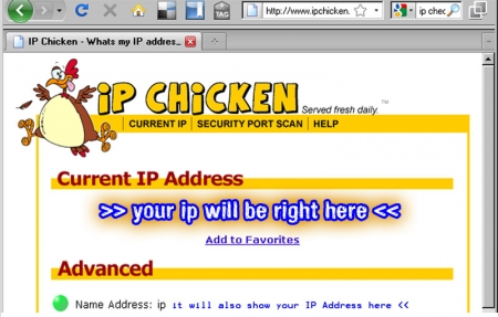 Get your external IP