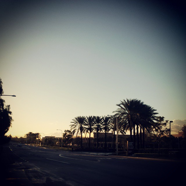 #earlybird gets the view. #Irvine #orangecounty walking off the twisted shots from last night.
