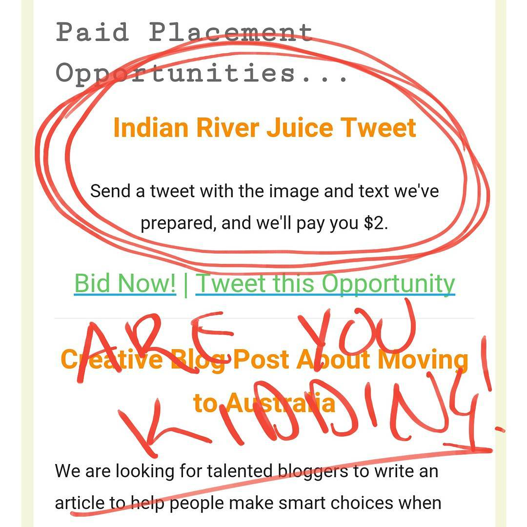 Bloggers, social media friends and everybody else. Please don't fall for this crap. Not only is it offensive, it's a disservice to the brand. #WTF #influencer #influencermarketing #socialmedia #sorrynotsorry #brandmanagement