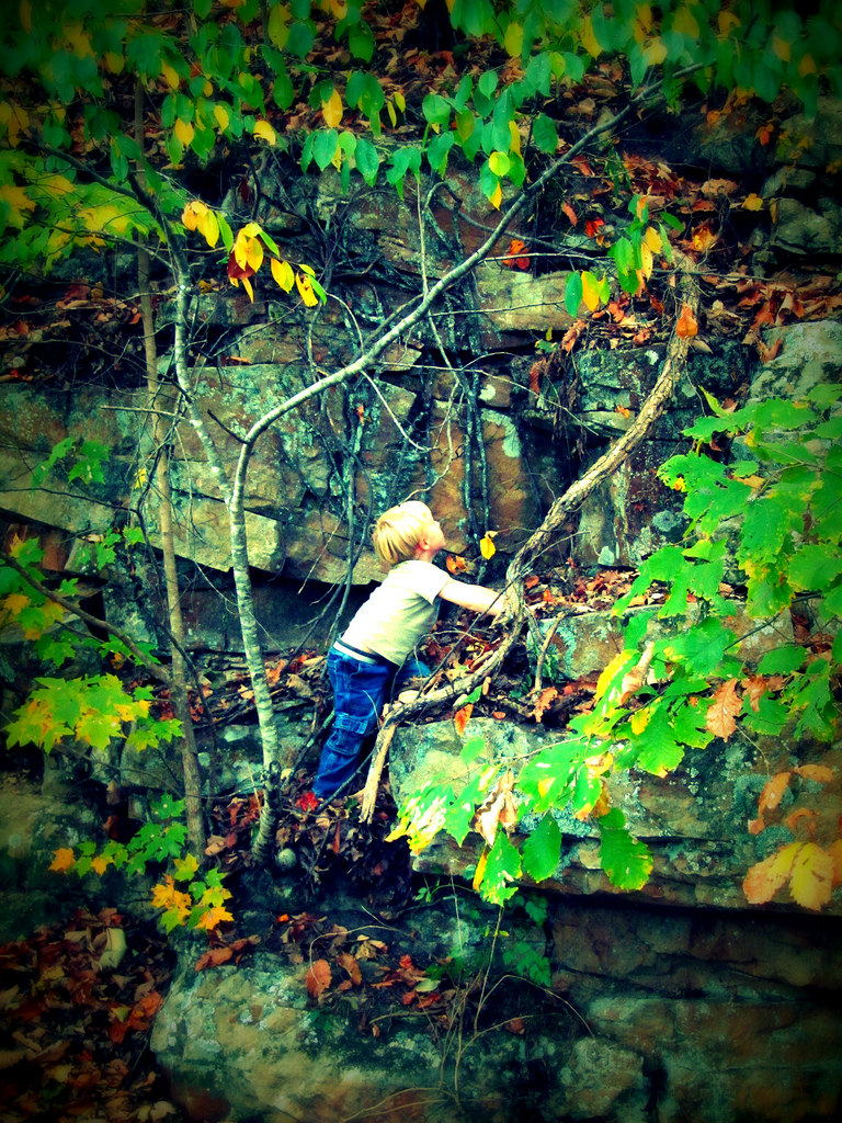 Photo of a fearless child about to climb a vine
