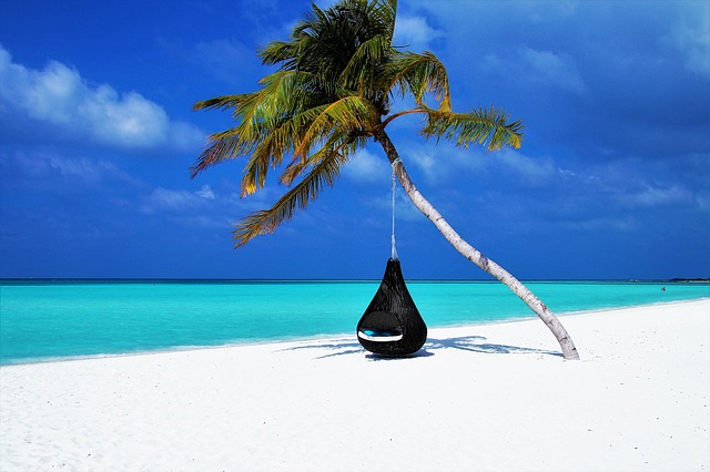 A scenic picture of a napping cocoon hanging from a palm tree by the shoreline of a paradise beach.