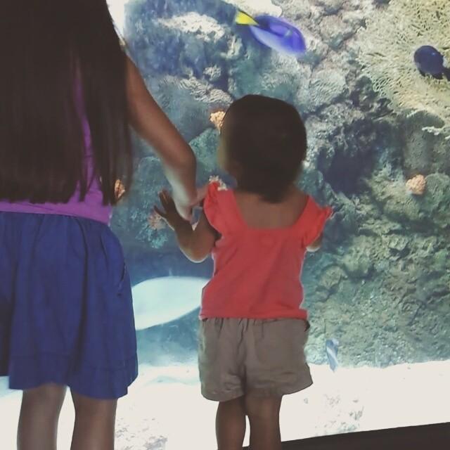 Having a blast at the Long Beach Aquarium