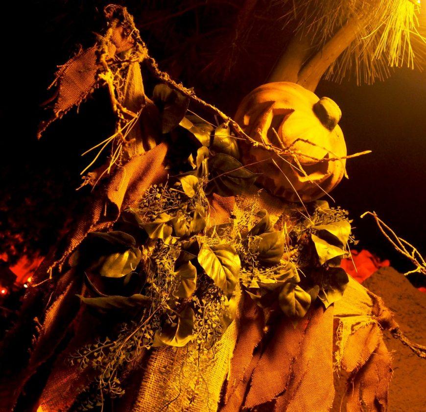 Knott's Scary Farm Scarecrow