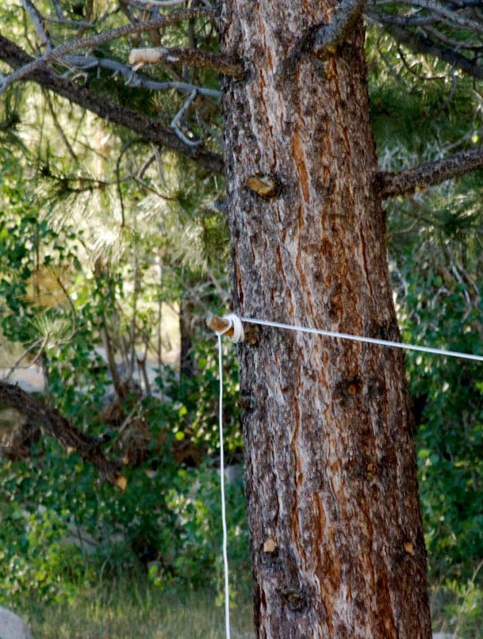 Rope starts here