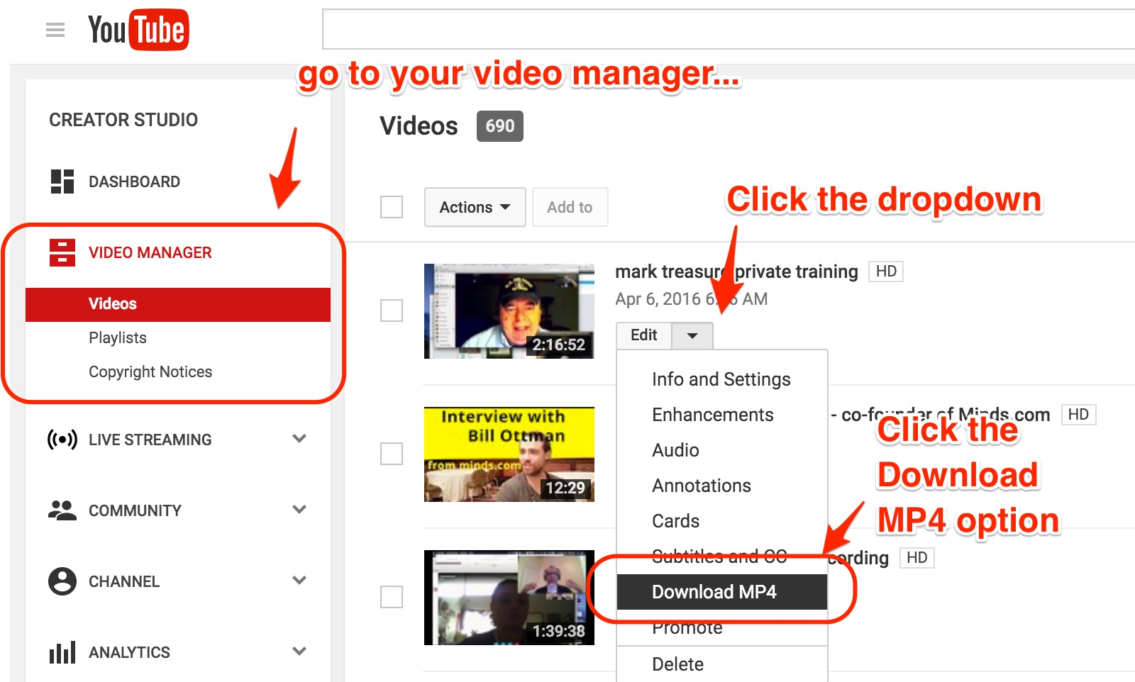 Screenshot shows where to download a youtube file from your own account