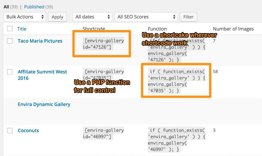 screenshot showing the php functions and shortcodes for Envira Gallery