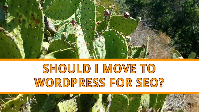 Should I Move to WordPress for SEO Reasons?