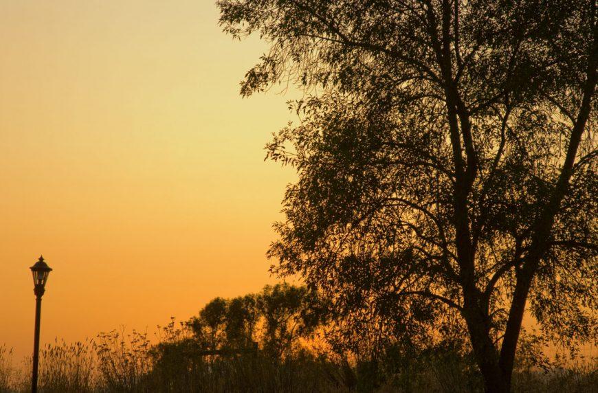 Sunset @ Hilton