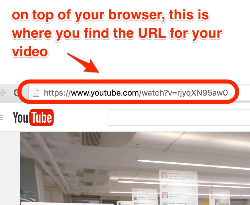 Screenshot higlhigts where a viewer finds the URL of a Youtube video